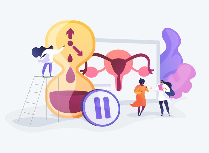 La reserva ovárica y su importancia para el embarazo