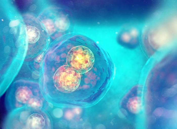 Tener un máximo de 35 años y buena reserva ovárica son algunos de los requisitos para la inseminación artificial