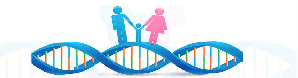 La OMS advierte sobre las consecuencias imprevistas de la edición de genes humanos
