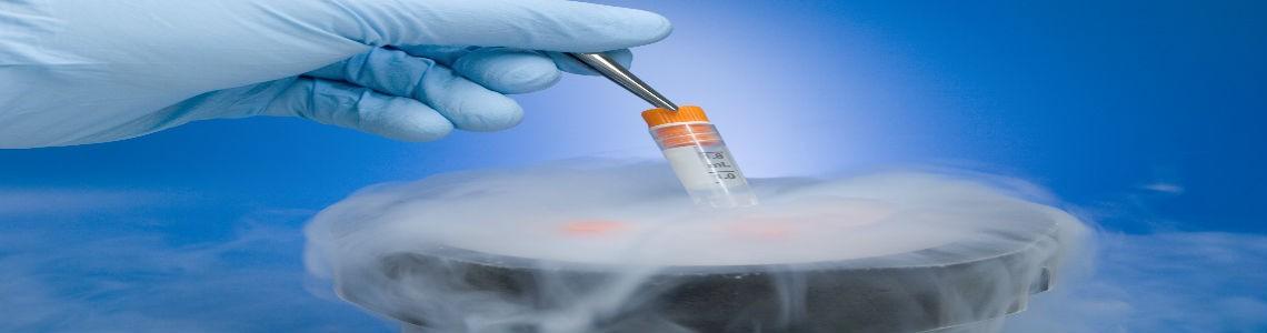 Vitrificación de óvulos, técnica y datos