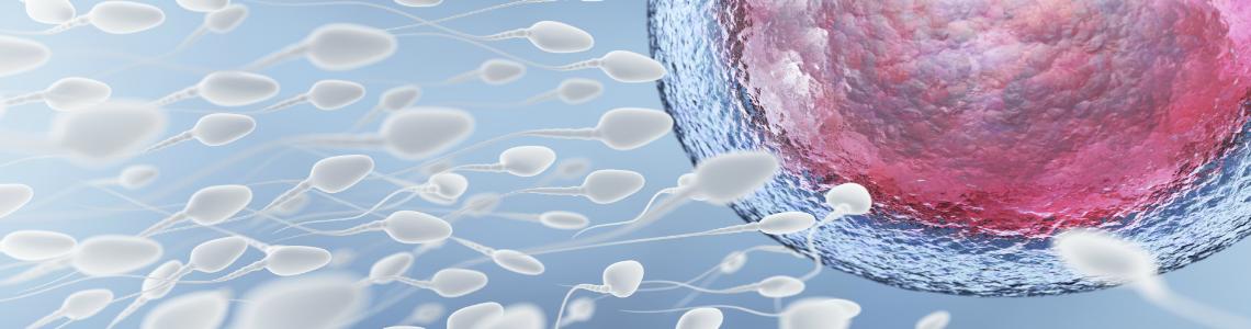 La edad y otros factores que también afectan la fertilidad masculina