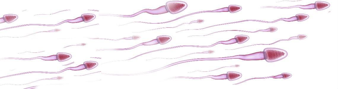 Nuevo test doméstico para medir la fertilidad masculina